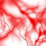 血管を柔らかくするのに効果的な食べ物と控えたい食べ物とは?